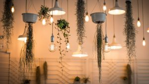 Save money on lighting your home: Our energy saving tips – Mozo.com.au